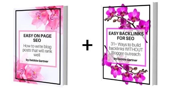 Debbie gartner SEO book bundle deal